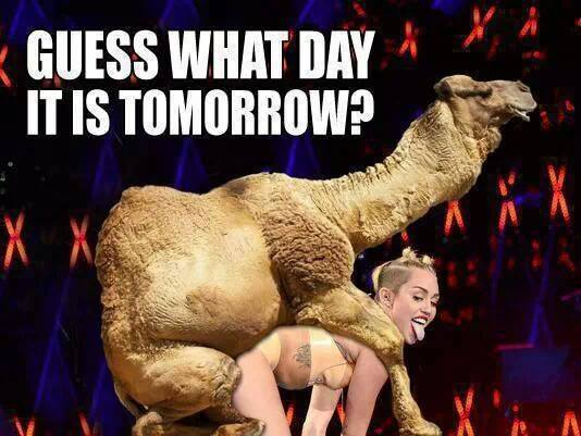 Happy Hump Day!!!!....