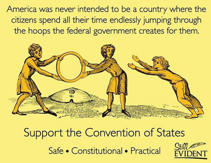 Convention of States. Push for it! We, the people, can change the federal government, but it will never happen if we give Congress the opportunity to vote on their own term limits, certainly a key issue in a Convention of States....