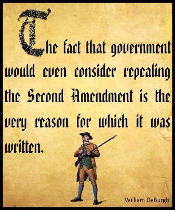 Our Constitution is under assault every day, and when it isn't under assault, it is being ignored by our government....