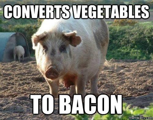 The amazing Bacon Machine!....
